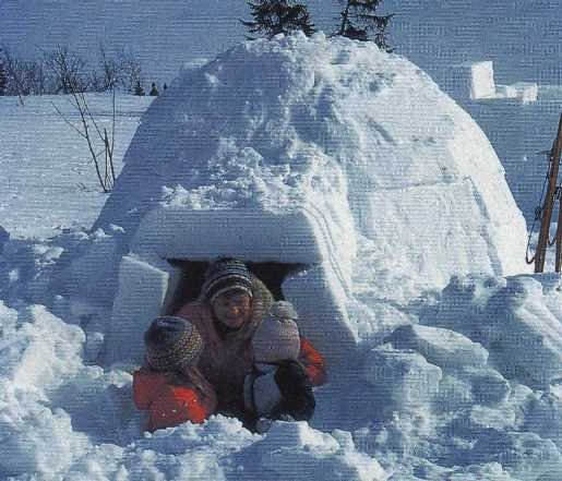 The future of housing for Interieur igloo